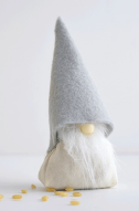 Library: Christmas Gnome