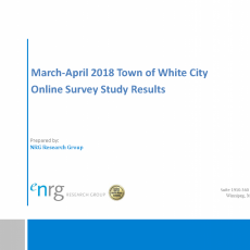 White City Survey Results
