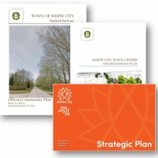 Vision, Mission and Planning Policies of the Town