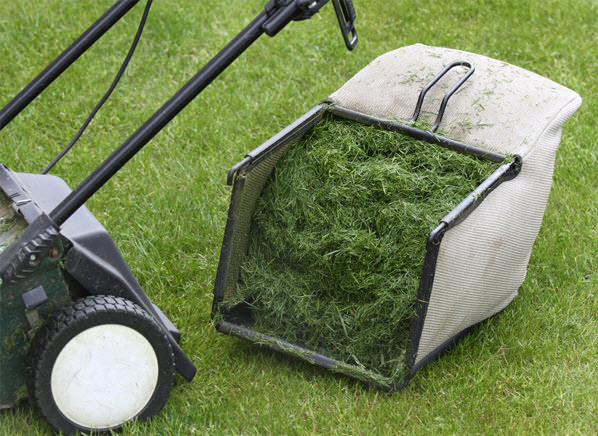 Grass Clippings/Garden Waste Bin (Weather Dependent)