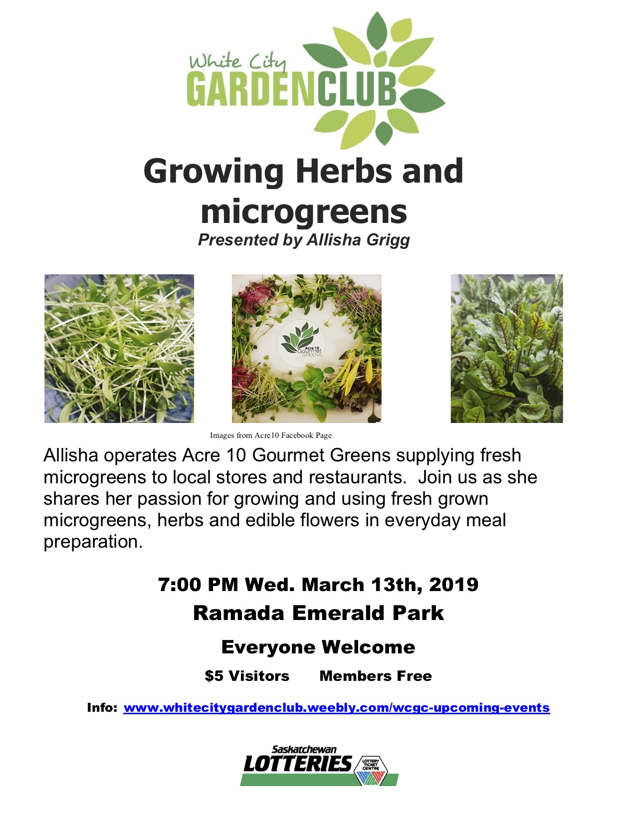 White City Garden Club: Growing Herbs and microgreens