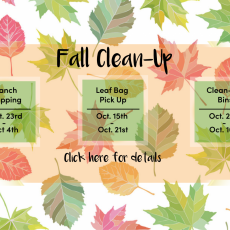 White City Fall Clean-Up Schedule