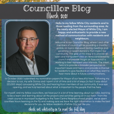 New! Councillor Blog