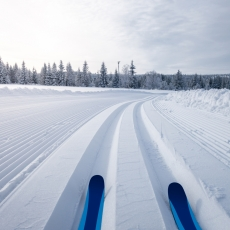 Calling all Cross Country Skiing Enthusiasts