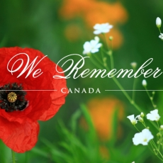 White City Town Office Closed - Remembrance Day - Monday November 11, 2019
