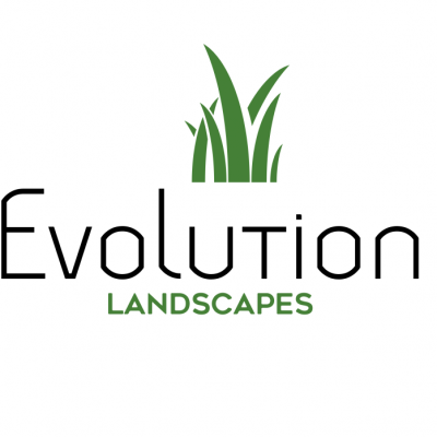 Evolution Landscapes