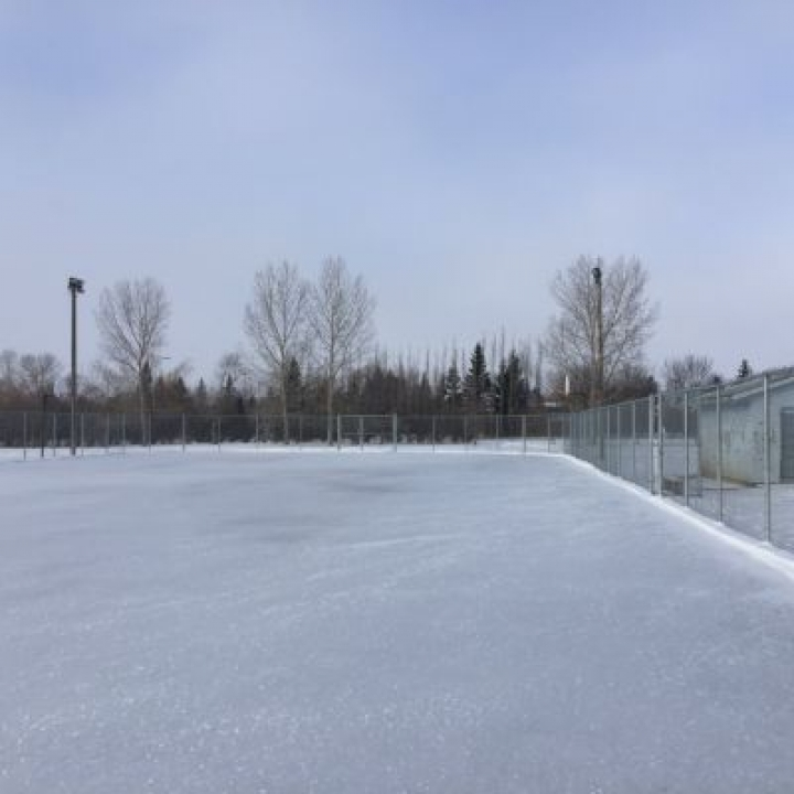 Outdoor Rink (Ecole White City Sports Field) OPEN